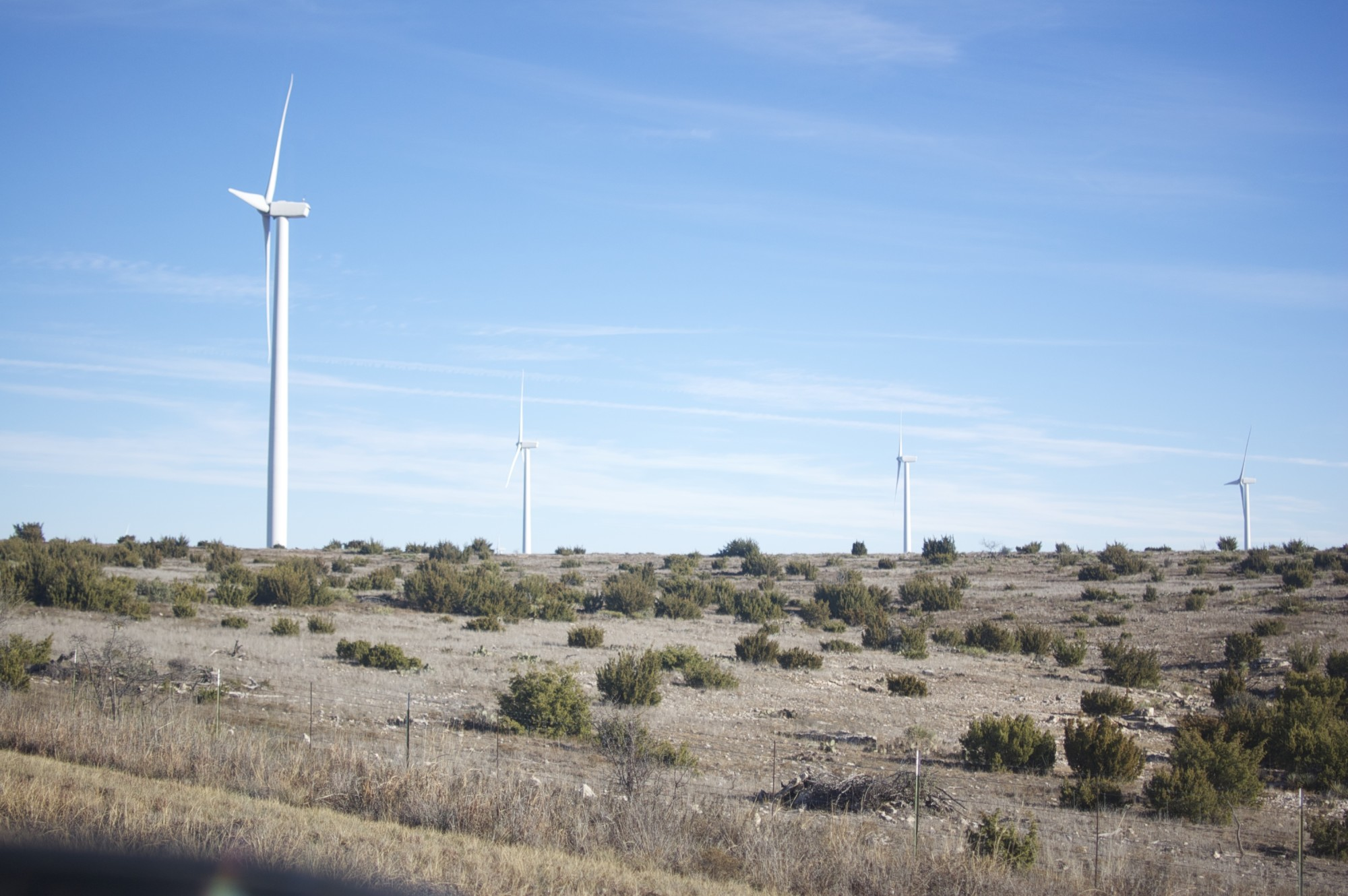 Windmills in Sweetwater, Texas