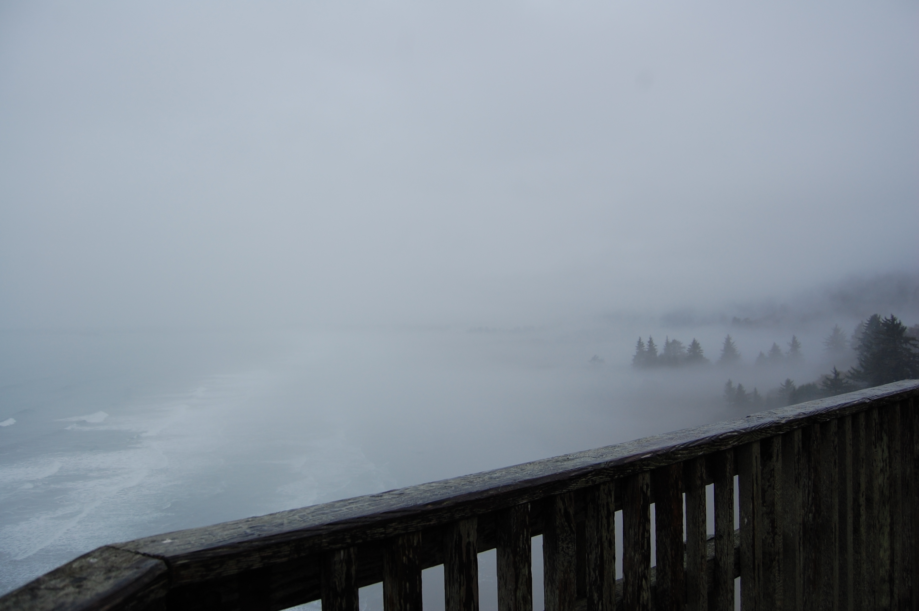 Fog at Endert's Beach Overlook