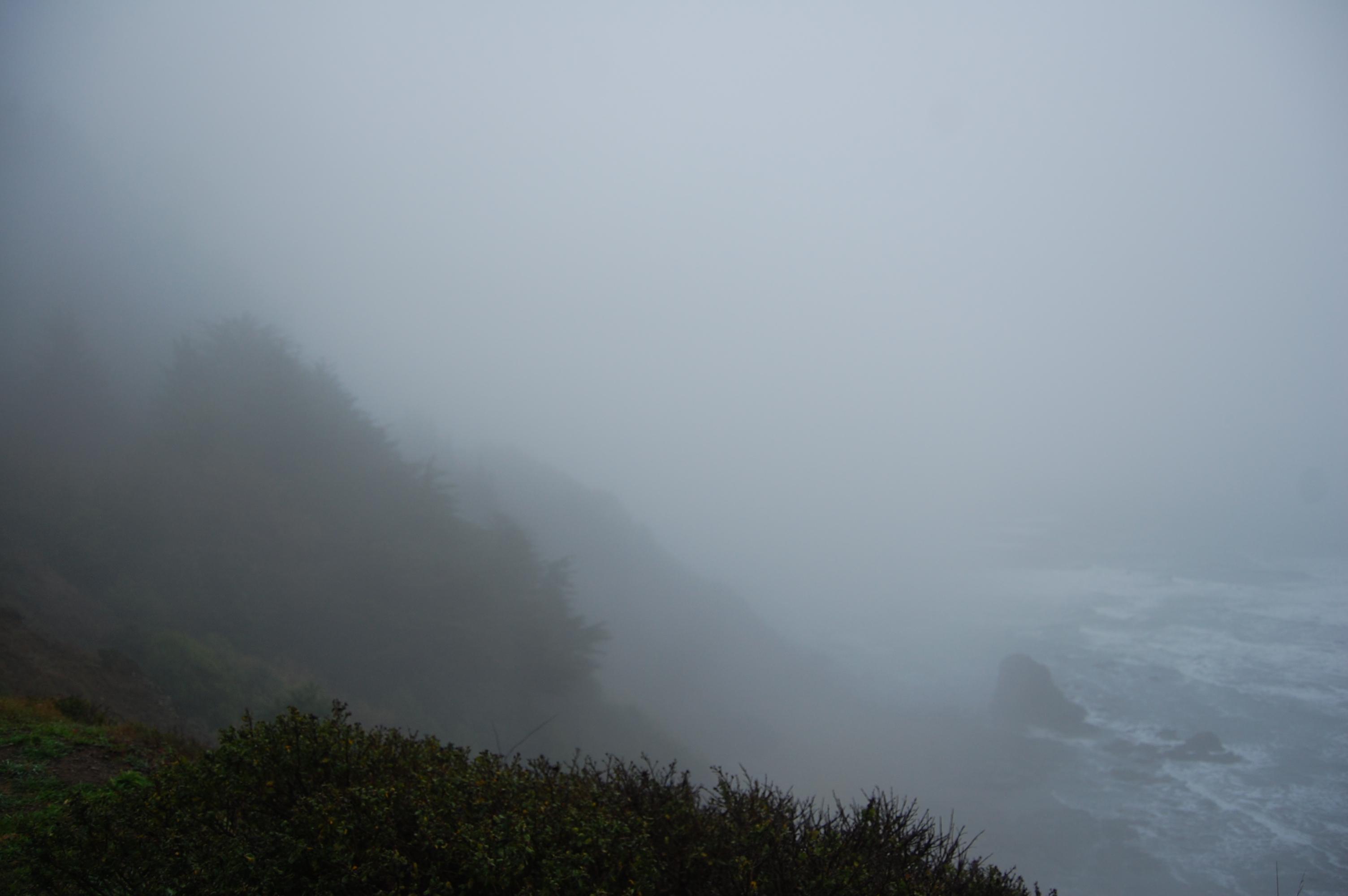 Fog at Endert's Beach Overlook