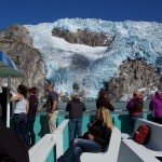 Glacier viewing on Kenai Fjord Tour