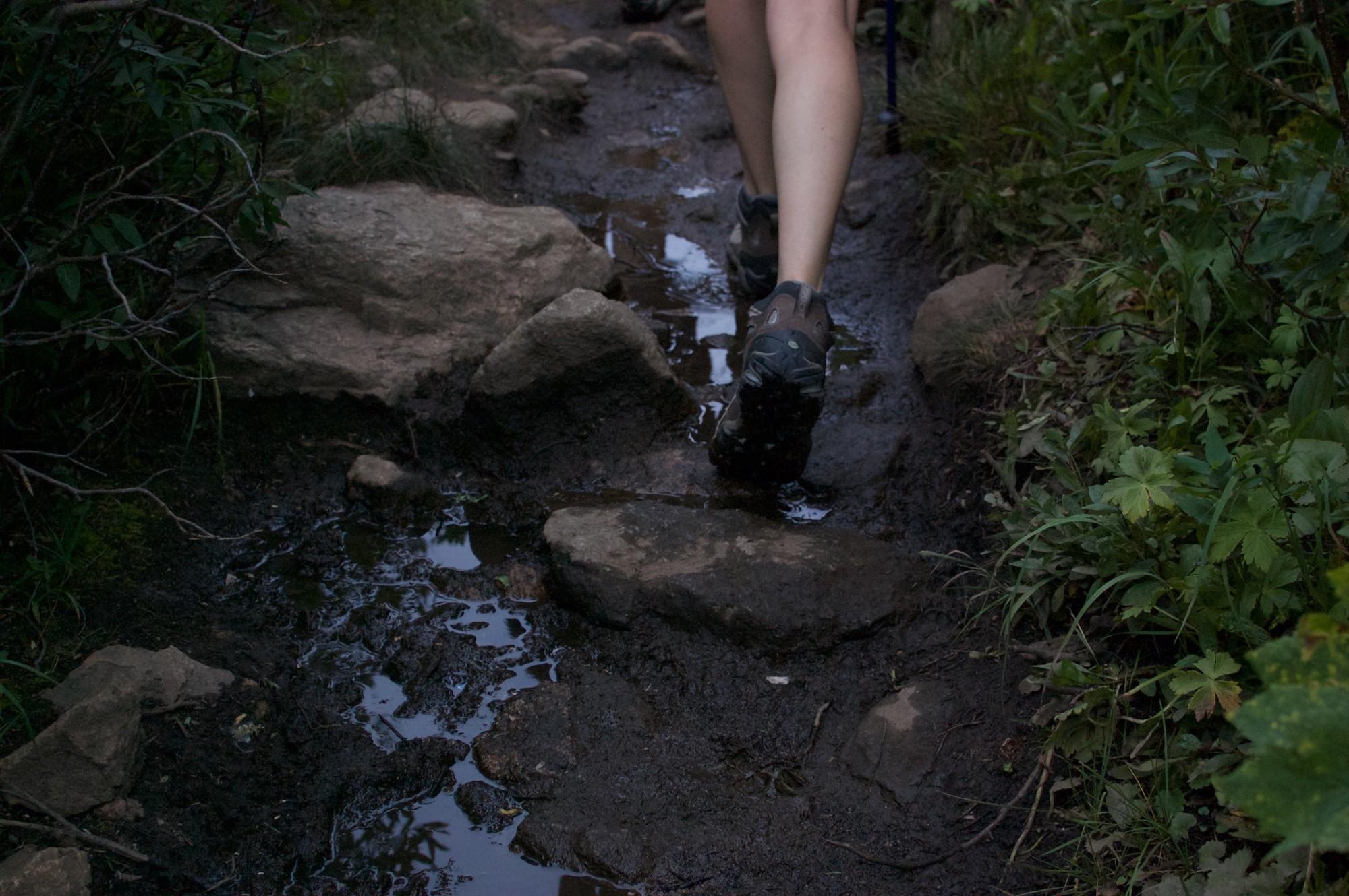Walking on a trail