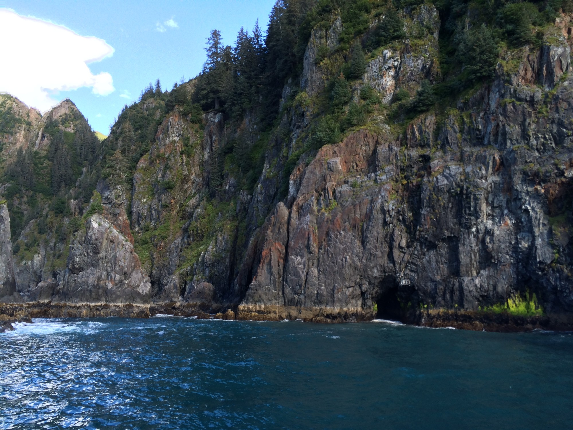 Views on Kenai Fjord Tour